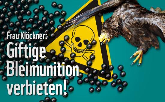 """Aktionsgrafik des Eil-Appells für ein Verbot von bleifreier Munition. Collage aus Seeadler, Schrotkugeln und dem Warnzeichen für """"Giftig"""". Quelle: WWF Deutschland"""